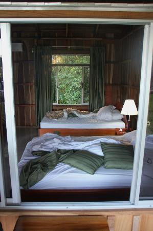 Brisas Arenal Hotel : Unser Zimmer mit Fenster zum Dschungel
