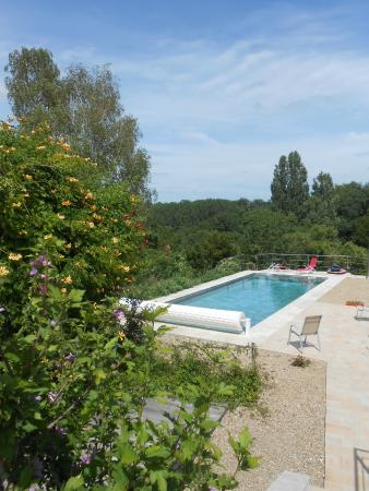 Les Secrets de Tifayne: Beautiful backyard salt water pool