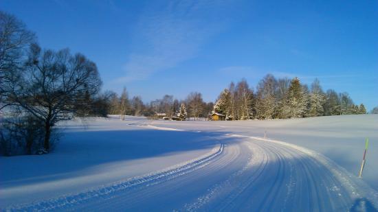 Gästehaus Hibler: Ski trail at Bad Kohlgrub