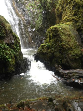 Idleyld Park, OR : Susan Creek Falls