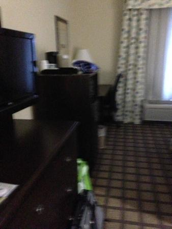 Holiday Inn Express Hotel & Suites Atlanta Southwest-Fairburn: other side