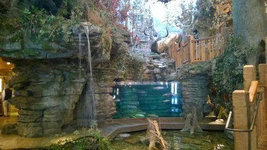 Bass Pro Shops Outdoor World: Big Buck U0026 Aquarium