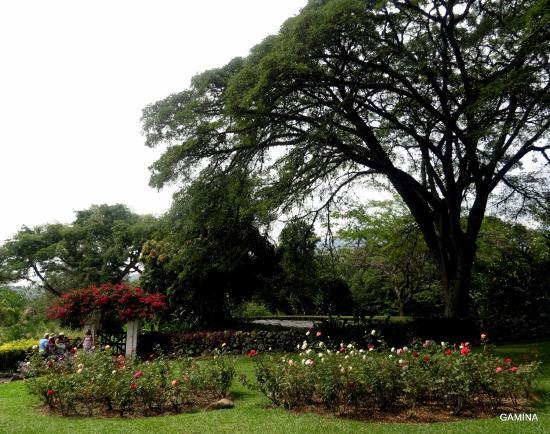 En los jardines de la hacienda el para so picture of for Jardines la hacienda