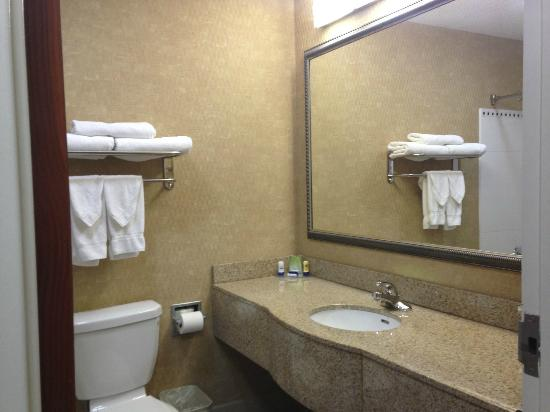 BEST WESTERN Gwinnett Center Hotel: Large Bathroom