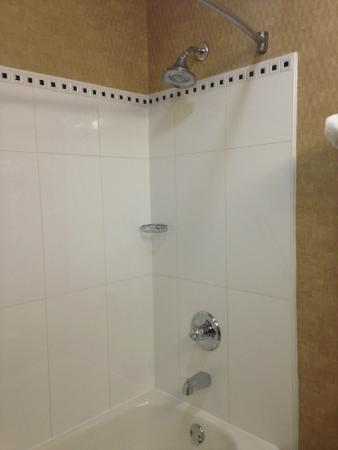 BEST WESTERN Gwinnett Center Hotel: Nice Shower Head