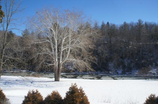 River House Country Inn: The grounds
