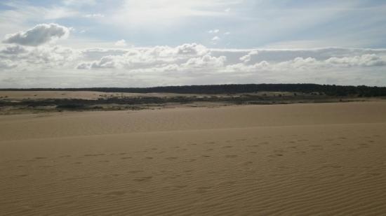 Cabo Polonio, Urugwaj: Vista desde el cerro de la buena vista