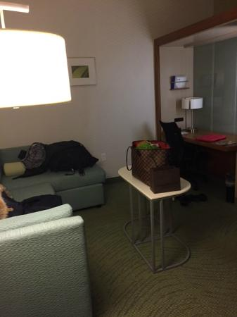 SpringHill Suites Philadelphia Valley Forge/King of Prussia: Living room
