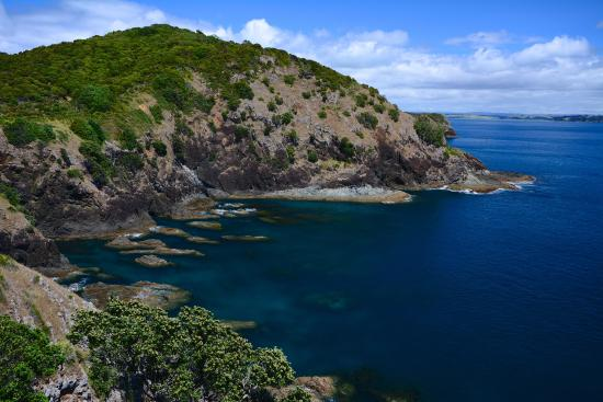 Kingfisher Yacht Charters: View from hill top