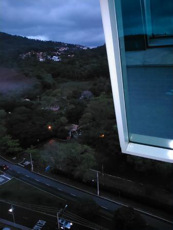 Premier Parc Hotel: Parque da Lajinha