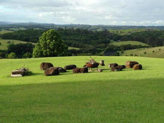 Gaia Retreat & Spa: Great view