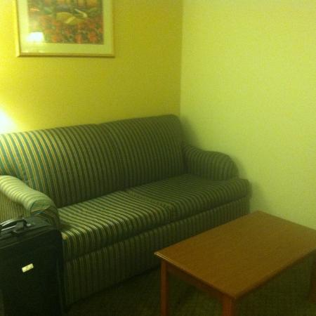 Americas Best Value Inn / Camelot Inn of Fairview Heights: Couch that folds out into a bed