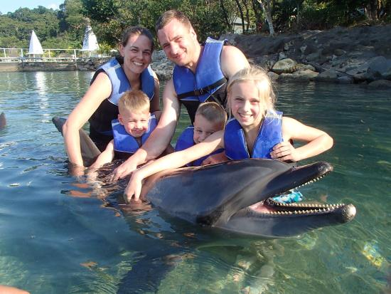 Ocean Adventure : Dolphin encouter