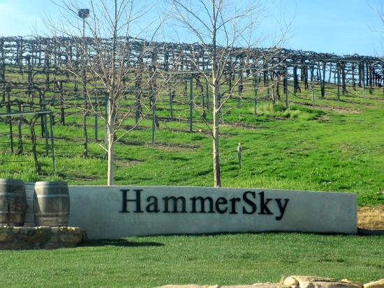 HammerSky Vineyards Image