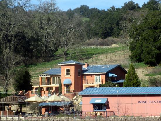 Poalillo Vineyards, Paso Robles, Ca