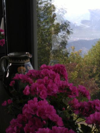 Hotel Bergsonne: Window of the dining room