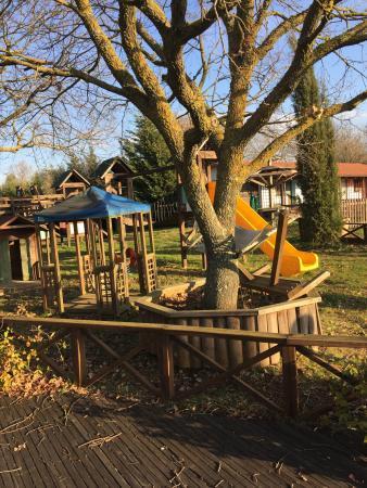 Agriturismo L'Introvabile: Parco giochi