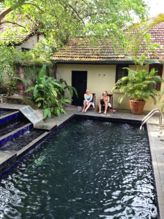 The Havelock Place Bungalow: the pool