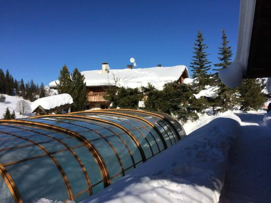 Hotel Chalet Alpage: Pool and Hotel from Chalet