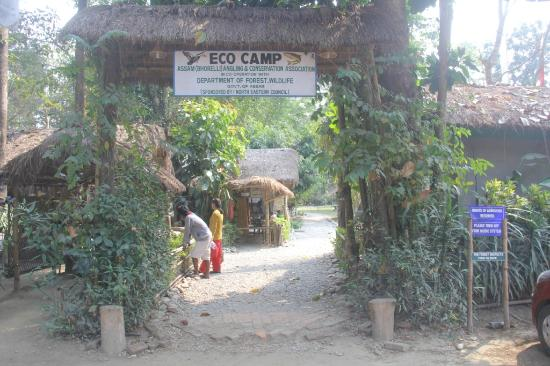 Nameri Eco Camp: Entrance