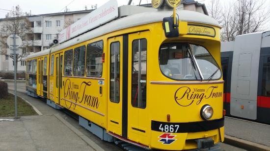 维也纳观光环城电车