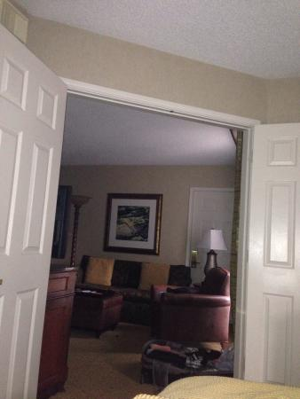 Homewood Suites by Hilton Dallas / Irving / Las Colinas: From bedroom looking into living space.