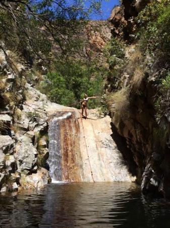 Good Hope Farm: The rock pools