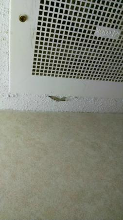 Microtel Inn & Suites by Wyndham Columbia/Harbison Area : Popcorn ceiling crumbling