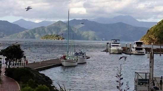 Escape to Picton Boutique Hotel: Queen Charlotte Sound one block away