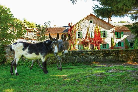 Hotel la Ferme des Vallées : Vue de l'hôtel depuis la ferme