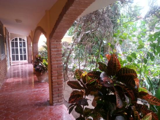 El Sol La Vida : Courtyard