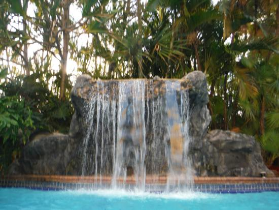 Holiday Inn Ft. Lauderdale Airport: Heated Pool with pretty Waterfall feature
