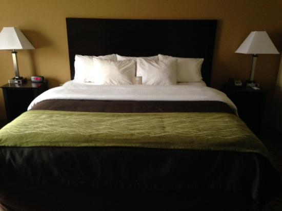 Comfort Inn & Suites Near Fort Gordon: PERFECT SLEEPER RIGHT HERE!!!