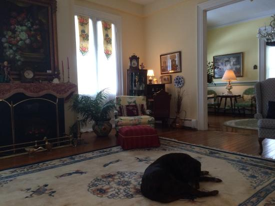 The Ocean House: Penny in The Parlor