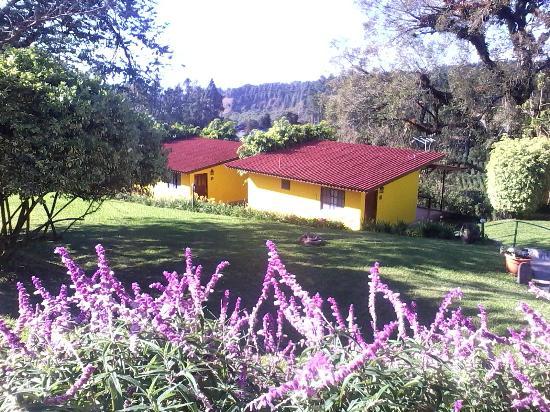 Villa Marita: I bungalow con vista sulle piantagioni di caffè