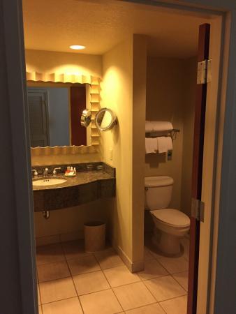 Renaissance Dallas Richardson Hotel : Bathroom