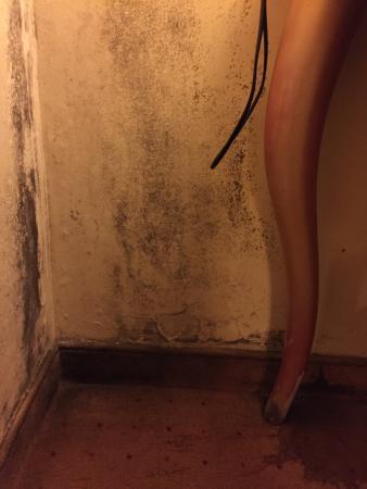 Vienna House Dream Castle Paris: Moisissures et moquette tachée : un dégât des eaux?