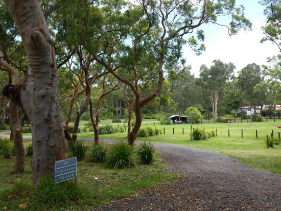 Middle Rock Holiday Resort: View of the campground area