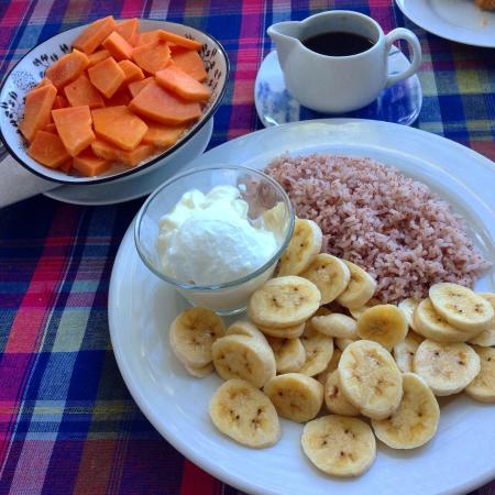 Banana Garden: Breakfast: porridge with papaya and rice with curd and banana. Delicious!