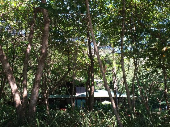 Latitude 10 Beachfront Resort: Main Lodge