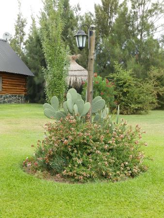 Cabañas El Relincho: Parque,