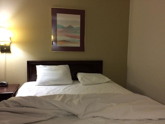 Econo Lodge: Bed with hair in it, inadequate pillow, cigarette burns in quilt.