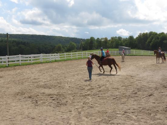 Hartwick, NY: Learning to Canter
