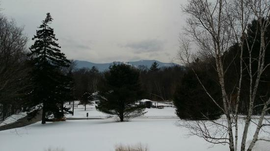 Forest Glen Inn: View from balcony