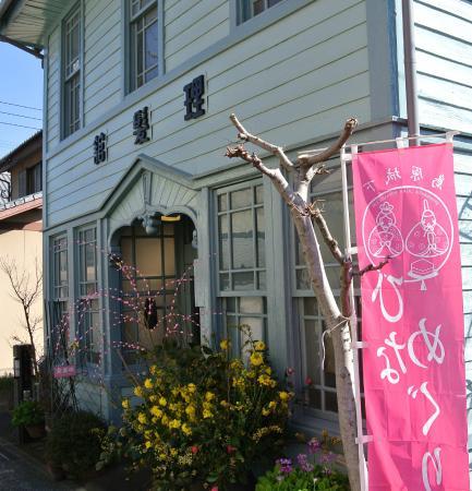Aoi Rihatsukan studio Momo