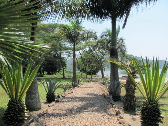 Lagoon Resort: Weg zum Strand