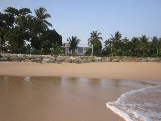 WHITE SURFING BEACH RESORT (Habaraduwa, Sri Lanka) - Specialiseret feriested - anmeldelser ...