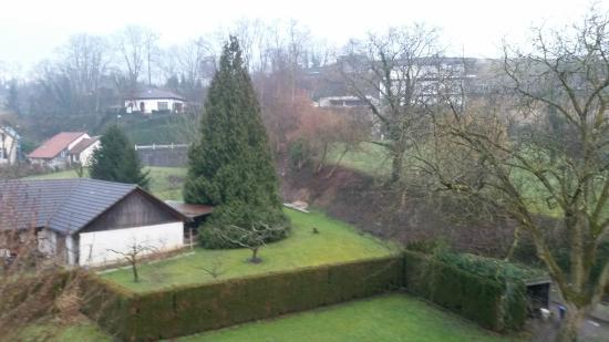 Hotel Restaurant Riegeler Hof : Blick in den Garten aus Zimmer 23
