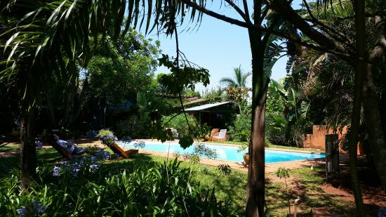 Malandela's Guest House: pool and grounds