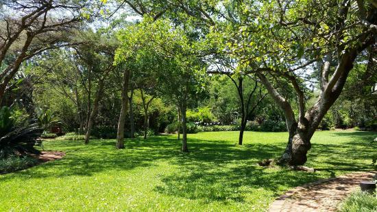 Malandela's Guest House: grounds/garden